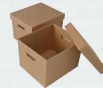 Hộp Carton 3
